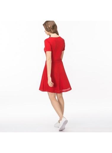 Lacoste Kadın Çizgili Elbise EF0917 Kırmızı